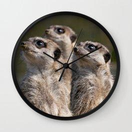 Meerkats on Guard Wall Clock