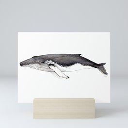 North Atlantic Humpback whale Mini Art Print