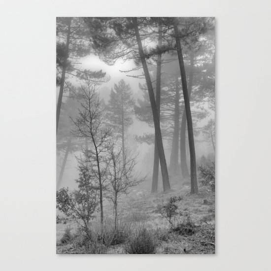 """""""Into The Woods"""" Dream Forest II Canvas Print"""