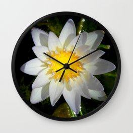 Purity in the Mud Wall Clock
