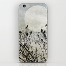 Travellers Roost iPhone & iPod Skin
