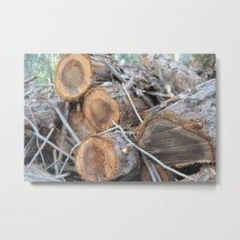 Woodsland Metal Print