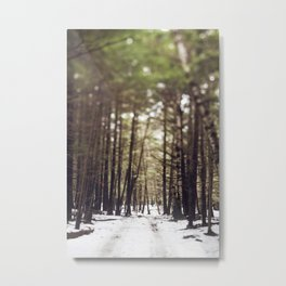 Wintry Path Through the Woods Metal Print