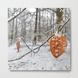 Frosted Leaves in Winter Forest Metal Print