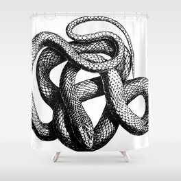 Snake | Snakes | Snake ball | Serpent | Slither | Reptile Shower Curtain