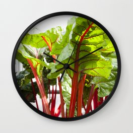 Swiss Chard in Color Wall Clock