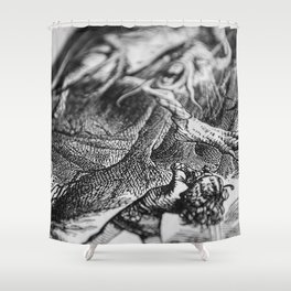 Alice in Wonderland - Attack of the Jabberwocky Shower Curtain