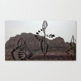Zions Where Nature Meets Man Canvas Print