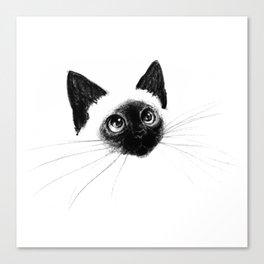 Curious Siamese Kitten Canvas Print