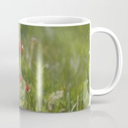 Indian Paintbrush Painterly Coffee Mug