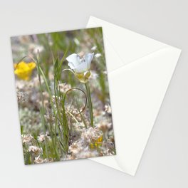 Watercolor Flower, Mariposa Lily 02, Dunraven Trail, RMNP, Colorado Stationery Cards