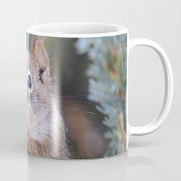 Mr. Squirrel ~ I Coffee Mug