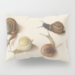 Naturalist Snails Pillow Sham