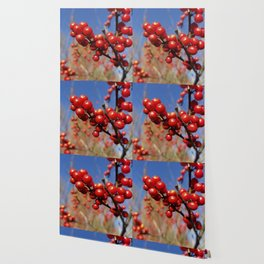 Winterberries glow against a blue autumn sky Wallpaper