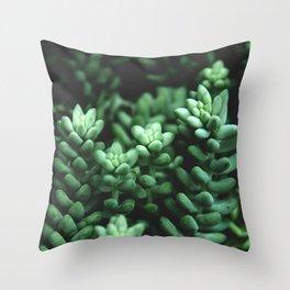 Succulent plants Throw Pillow