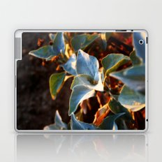Desert Leaves II Laptop & iPad Skin