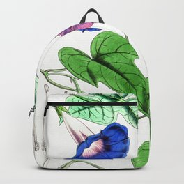 A Purging Pharbitis Vine in full blue and purple bloom - Vintage illsutration Backpack