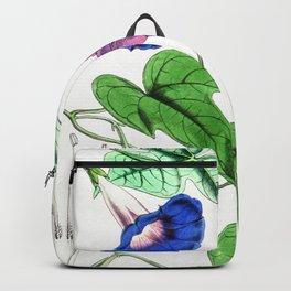 A Purging Pharbitis Vine in full blue and purple bloom - Vintage illsutration Backpack