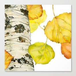 Falling Aspen Leaves Canvas Print
