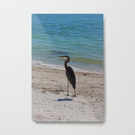 Vague Visionary Metal Print