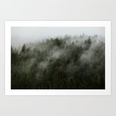 Pacific Northwest Foggy Forest Art Print