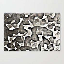 paving stones Canvas Print