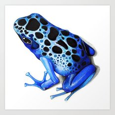 Blue Poison Frog Art Print
