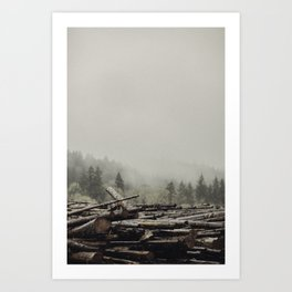 Logs Art Print