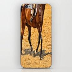Horse Gallop iPhone & iPod Skin