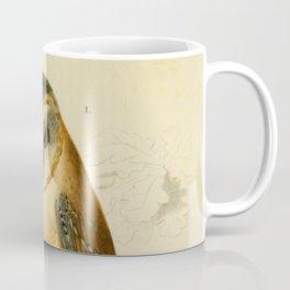Naturalist Barn Owl Coffee Mug