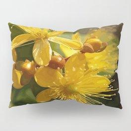 Turkish St Johns Wort Wild Flower Vector Image Pillow Sham