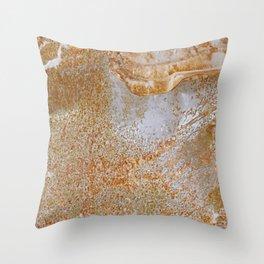 Metal Sheet Surface 2 Throw Pillow