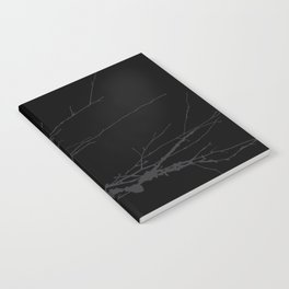 Just a branch Notebook