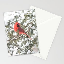 Cardinal on a Snowy Cedar Branch (v) Stationery Cards