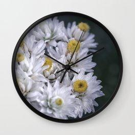 Macro photo white flower Wall Clock