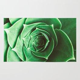 Succulent Rug
