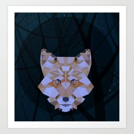 A fox in the middle of the night Art Print