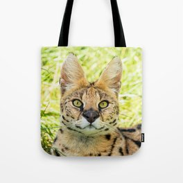 SERVAL BEAUTY Tote Bag
