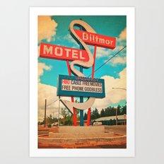 The Biltmore Art Print