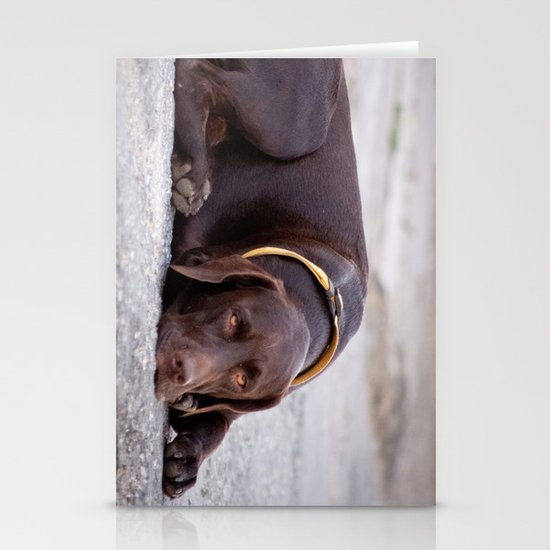 the hound dog Stationery Cards