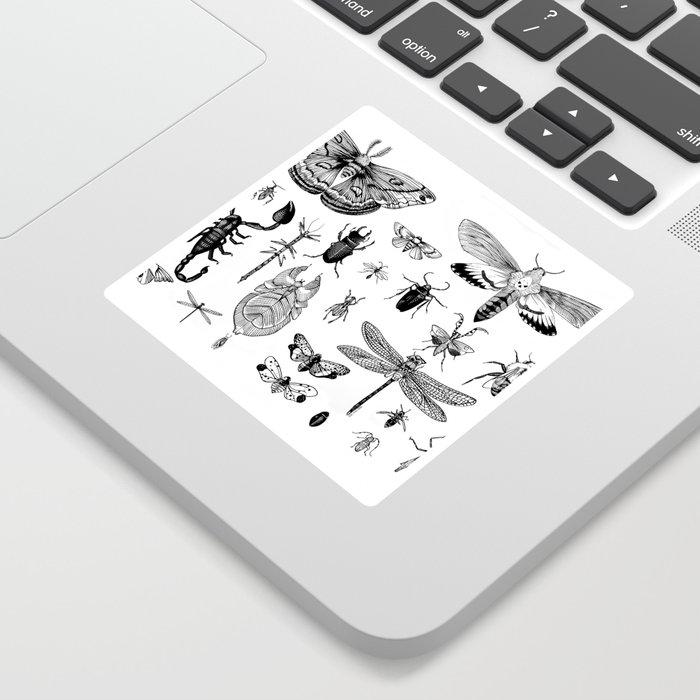 Bug Board Sticker