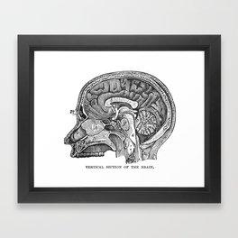 Body Diagram No. 8 Framed Art Print