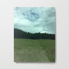 meadow forest view Metal Print