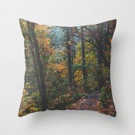 Leaf a Trail Throw Pillow