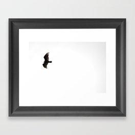 Flyer 01 Framed Art Print