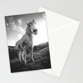 Horse (Black and White) Stationery Cards