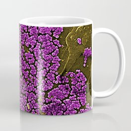 Clumps of Methicillin-Resistant Staphylococcus Aureus Bacteria Coffee Mug