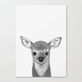 Little fawn Canvas Print