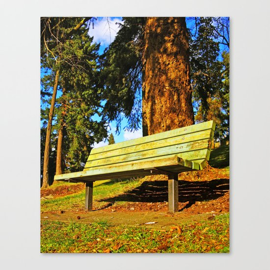 South Park bench Canvas Print