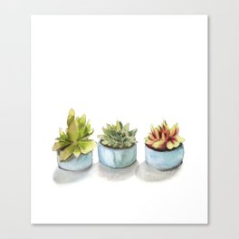 Succulents watercolor painting Canvas Print